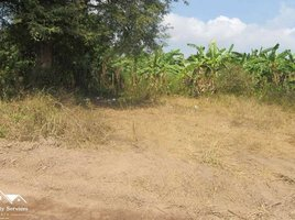 N/A Land for sale in Veal Sbov, Phnom Penh Land and Banana farm for Sale in Chbar Ampov