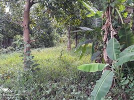 N/A Land for sale in Nirouth, Phnom Penh Land For Sale in Chbar Ampov