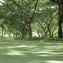 Greenside by Sansiri
