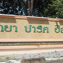Pattaya Park Hill 4