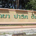 Pattaya Park Hill 4