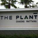The Plant ChaengWattana