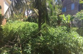 bedroom Land for sale at in Siem Reap, Cambodia