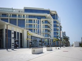 阿布扎比 Saadiyat Cultural District Mamsha Al Saadiyat 5 卧室 顶层公寓 售