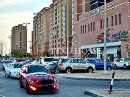 阿布扎比 Mohamed Bin Zayed Centre 8 卧室 别墅 售