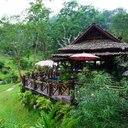 Pong Yaeng