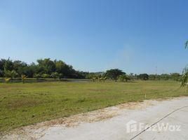 N/A บ้าน ขาย ใน ห้วยทราย, เชียงใหม่ Beautiful 300 SQW Land in Maerim for Sale