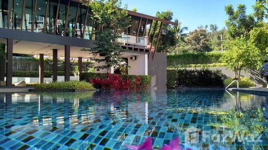 Photos 1 of the Communal Pool at Dcondo Campus Resort Chiang-Mai