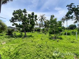 N/A Land for sale in Pran Buri, Hua Hin Land on Pranburi Beach for Sale