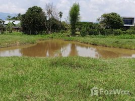 N/A Land for sale in Huai Sai, Chiang Mai Land in Moo Baan Nong Pha Man