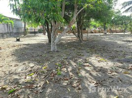 N/A Land for sale in Chalong, Phuket 1 Rai Land With House For Sale In Chalong