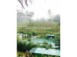 Kedah Padang Masirat Batang Kali, Selangor N/A 土地 售