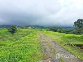San Jose Mountain and Countryside Agricultural Land For Sale in Cascajal, Cascajal, San José N/A 土地 售