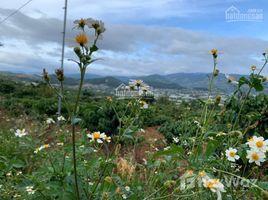 林同省 N'Thol Ha Bán miếng đất NN 4,500m2 tại Huyện Đức Trọng, giá 1,9 tỷ, đường ô tô N/A 土地 售