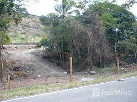 N/A Land for sale in El Harino, Cocle A 14 KILOMETROS DE LA CARRETERA INTERAMERICANA QUE CONDUCE A LA CANDELARIA, La Pintada, Coclé