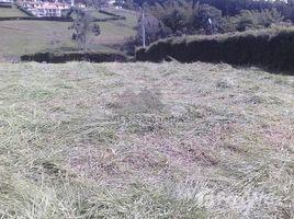 N/A Land for sale in , Santander MESA DE JERIDAS -CONDOMINIO HACIENDA LA MANIGUA LOTE 2, Los Santos, Santander