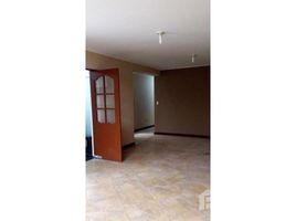 3 Habitaciones Casa en alquiler en La Molina, Lima SANTA CRUZ DE TENERIFE, LIMA, LIMA