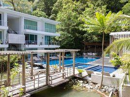 Studio Condo for sale in Kamala, Phuket The Trees Residence