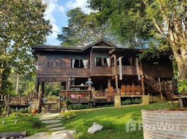 5 Bedrooms House for sale in Mae Raem, Chiang Mai Wooden House In Nature