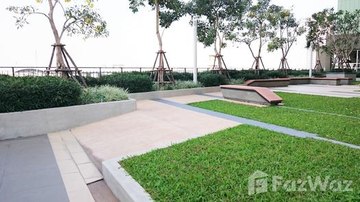 Photos 1 of the Communal Garden Area at Lumpini Place Srinakarin