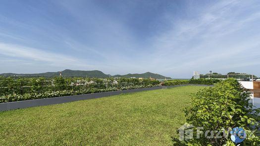Photos 1 of the Communal Garden Area at Sea Saran Condominium