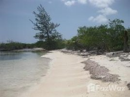 N/A Terreno (Parcela) en venta en , Islas De La Bahia - Don Quickset, Utila, Islas de la Bahia