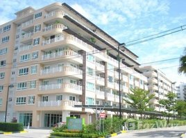 清迈 Suthep Punna Residence 1 @Nimman 2 卧室 公寓 租