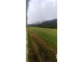 Araucania Villarrica Panguipulli, Los Rios, Address available on request N/A 土地 售