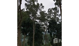 N/A Property for sale in Bentong, Pahang Bentong