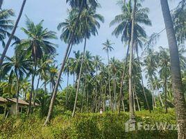 苏梅岛 利巴诺伊 Beachfront Land for Sale in Lipa Noi, Koh Samui N/A 土地 售
