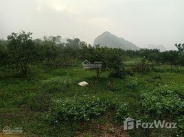 N/A Land for sale in Long Son, Hoa Binh Bán 6ha làm trang trại tại Lương Sơn Hòa Bình