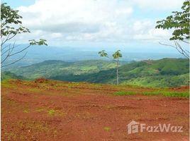 N/A Terrain a vendre à , Alajuela San Ramon, Alajuela, Address available on request