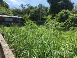N/A Land for sale in Pa Khlok, Phuket Beachfront Land in Cape Yamu for Sale