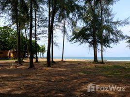 攀牙 Khuek Khak Beachfront Land for Sale In Bang Niang Beach N/A 土地 售