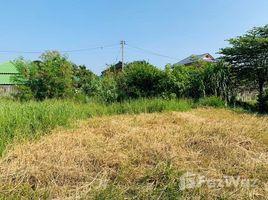 呵叻府 北冲县 Land For Sale With 175 Sqw. N/A 土地 售