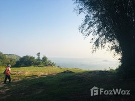 N/A Property for sale in Hat Phan Krai, Chumphon Land For Sale In Chumpon