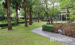Photos 2 of the Communal Garden Area at Lumpini Park Rama 9 - Ratchada