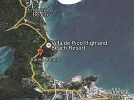 民马罗巴区 Puerto Galera Land For Sale at Punta Buwaya Beach in Puerto Galera N/A 房产 售