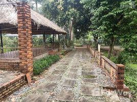 N/A Land for sale in Lien Son, Hoa Binh Cần bán ngay 5476m2 đất có khuôn viên ao vườn bể bơi hoàn thiện tại Lương Sơn - Hòa Bình