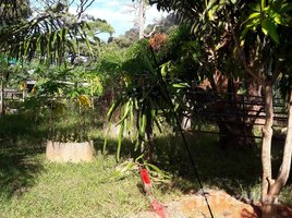 N/A Property for sale in Karon, Phuket Sea View Land In Phuket Karon Beach