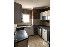 Al Jizah Furnished penthouse | Ultra Super Lux | Mohandessin 2 卧室 顶层公寓 租