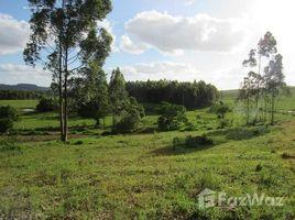 N/A Terreno à venda em Sapiranga, Rio Grande do Sul Porto Palmeira, Sapiranga, Rio Grande do Sul