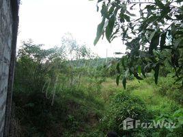 Preah Sihanouk Pir Prime land for sale in Sihanoukville N/A 土地 售