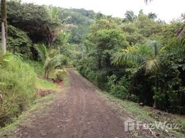N/A Terrain a vendre à , Guanacaste 5001 - Huge lot in gated community,: Oversized lot in nice community, 15 minutes to town and beaches, Playa Samara, Guanacaste