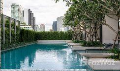 Photos 3 of the Communal Pool at TELA Thonglor