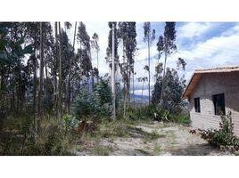 Imbabura Cotacachi Otavalo, Imbabura, Address available on request 3 卧室 屋 售