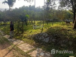 Studio Haus zu verkaufen in Cu Yen, Hoa Binh Khuôn viên nhà vườn đẹp tuyệt vời, giá hợp lý tại Lương Sơn, Hòa Bình