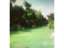 Cairo Roof With Pool 4 Rent In Mini Compound n New Cairo 3 卧室 顶层公寓 租