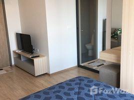 Studio Condo for rent in Bang Na, Bangkok Ideo O2