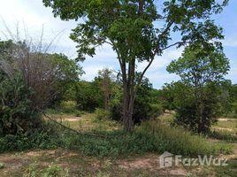 N/A Land for sale in Cha-Am, Phetchaburi 13 Rai Sea View Land for Sale in Cha Am